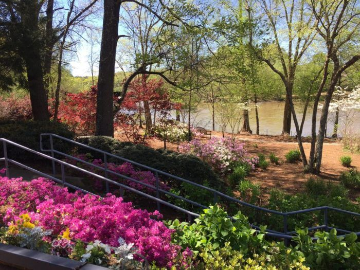 Dinner In Atlanta: Ray's On The River